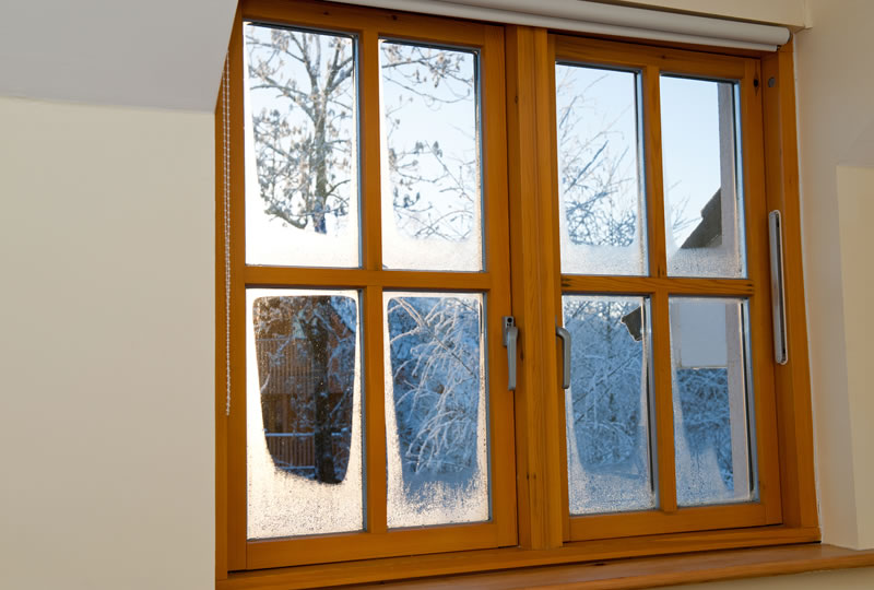 Need new windows in michigan here are 5 39 must know 39 tips for I need new windows for my house