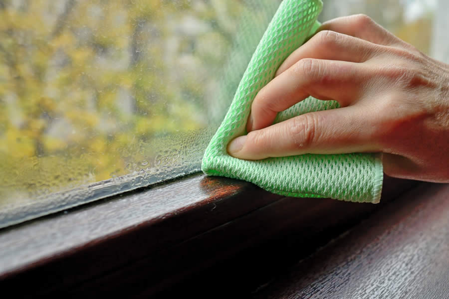 Dealing with Condensation on Your Home Windows in Michigan